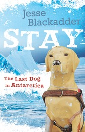 final high res cover Stay The last dog in Antartica